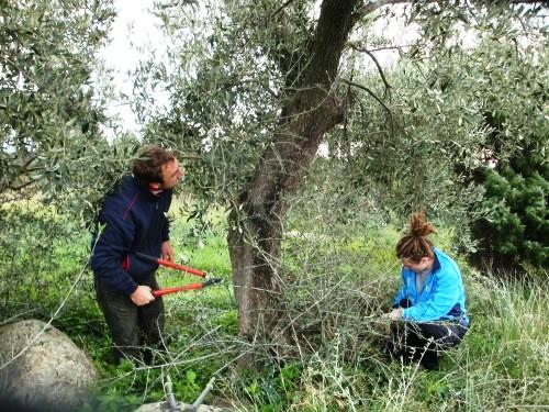 Organic Farming Soli Deo Gloria